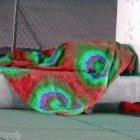 homeless-blanket