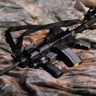 Gun-Divest