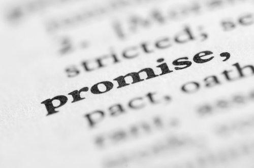 promise-zone