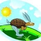 Rabbit-turtle