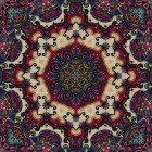 Social-ent-fractal