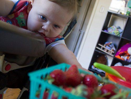Childrens Diets