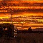 Bus-sunset