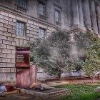 IRS-and-homeless