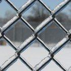 Prison-fences