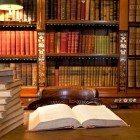 Law-study