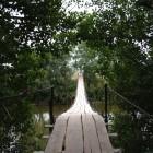 Suspended-bridge