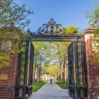 Yale-entry