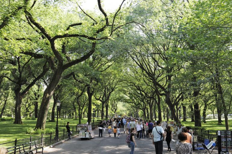 Central-Park-walking