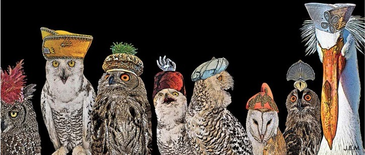 Birds-with-hats