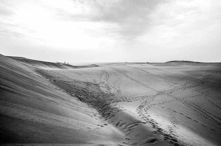 """""""LANDSCAPE"""" BY MILENA SURDUCAN / WWW.MILENASURDUCAN.COM"""