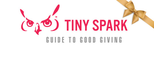 logo_TS Guide to Good Giving