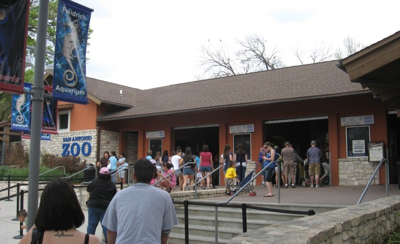 Texas Zoos Struggle To Navigate State S New Open Carry
