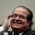 Ant-Scalia