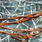 Rusty_Barbed_Wire