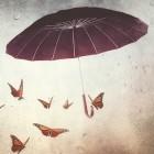 Rainy-Day-Grantmaking-small