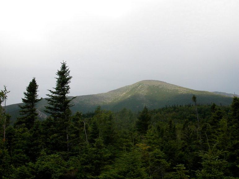 Katahdin-Woods