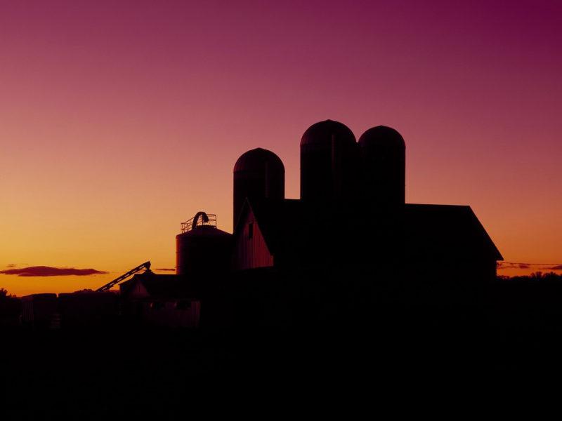 dairy-barn-1468954_960_720