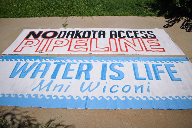 Dakota-Pipeline-Access-protest-signs