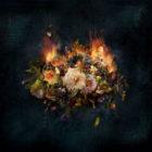 Flowers-on-fire