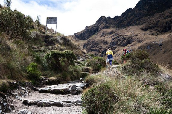 An exhausted trekker is approaching the pass. Day two is the hardest on the Inca Trail. While it's not an especially physically demanding climb, the challenge results from the fact that the air is so thin and the climb is so steep. On the way up, I cursed the fact that I was wearing heavy, full-leather hiking boots. Afterall, every gram counts - literally! But it was a different story on the way down; we flew past the other trekkers in their sand shoes and synthetic boots.