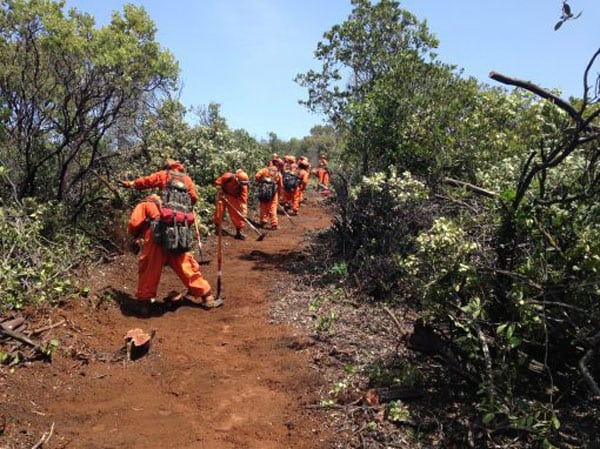 California Pays Inmates $1 an Hour to Fight Wildfires - Non
