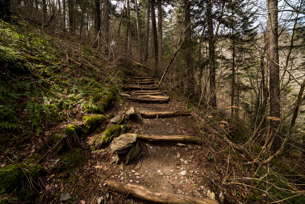 Does the Appalachian Trail Count as Land? US Supreme Court Must Decide